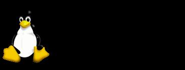 Immagine introduttiva da Linux a chiave Bios Windows